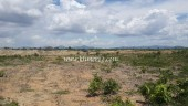 Agriculture Land for Sale ( Land Size= 80Ha) in Kampong Speu Province.