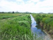 Agriculture Land for Sale and  Rent ( Land Size= 70 ~ 80 Ha ) in Kampong Speu Province.