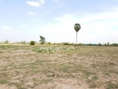 Agriculture Lands for Sale From 30 hectares